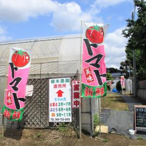 農業王国 榎本農園  (上尾市)