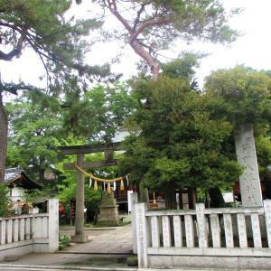 """行田八幡神社の """"花手水(はなちょうず)""""  (行田市)"""