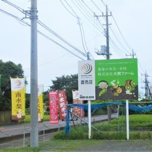 大熊ファーム直売所  (加須市)