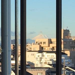にゃんこ  富士山が見えるぐらい冬にゃ