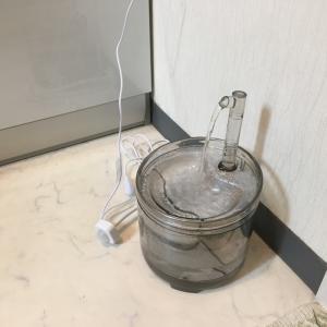 にゃんこ センサー付き猫水飲み器 うーん