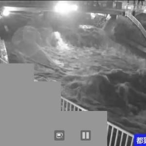 神戸の大雨で河川氾濫しそうな時は、河川モニタリングラメラ見ればヤバさが解る。決して実際の川を見に行ってはいけないのだ!