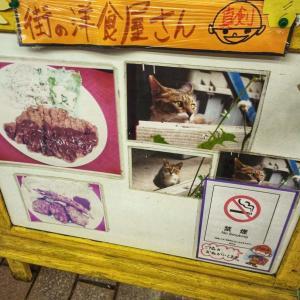 看板ネコ、こふじネコがいる洋食屋「こふじ」さん