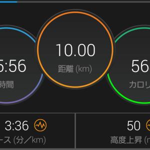 アルファフライで10キロペース走