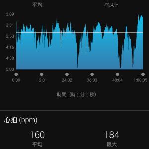 山コース16キロ合同