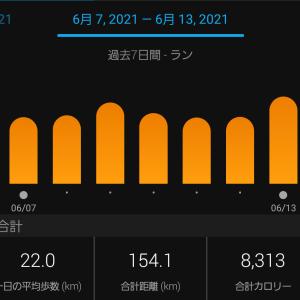 週間練習記録2021.6.7-6.13&jog中心