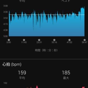 16キロ走合同&ダニエルズの計算式