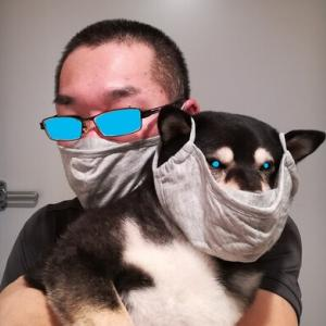 布マスク買いました