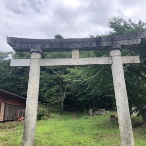 物心ついてから初めて存在を認識した「神社」に行ってきた