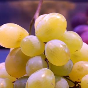 【旬は7~10月】マスカットX健康X美味しい料理【畑の果物】