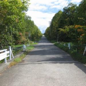 晩秋の坂道を歩く