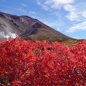 旭岳の絶景紅葉