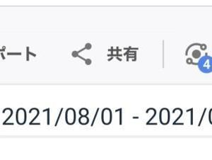 【読まれた記事・アクセス数】はてなブログ(2021.8月)