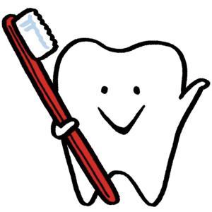 歯科「定期検診」行ってますか?予防が大事だよ!!