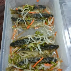 Marinated AYU