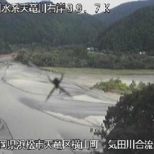 ライブカメラに、く・・蜘蛛