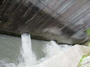 「鮎泳ぐ逆川づくり市民の会」の活動