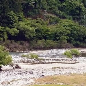 大千瀬川、最高の状態です