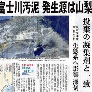 富士川の河川環境は壊滅的