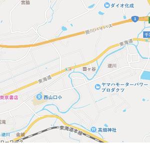 掛川市の逆川に鮎が放流されます
