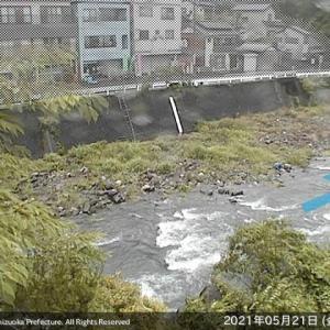 興津川は前評判通り