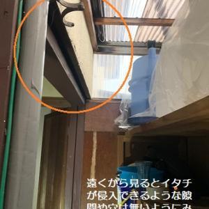 京都府亀岡市でイタチ防除後、再侵入のお話