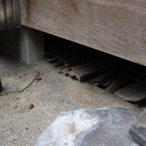 害獣は床下からどうやって天井裏に侵入するの?京都・長岡京市のお宅の事例。