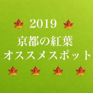 【2019 京都 紅葉 】床紅葉・ライトアップも必見!見頃は?おすすめ紹介♪ついでにここも行っちゃおう~