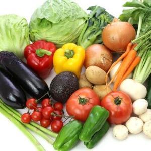 野菜中心の食生活との出会い