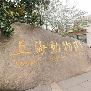 6泊7日上海旅行記【1-1】上海動物園に行ってきました!