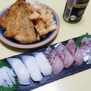 ニ兎定食(?)