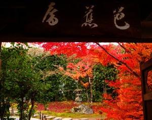 金福寺の紅葉と芭蕉庵が綺麗なので紹介したい