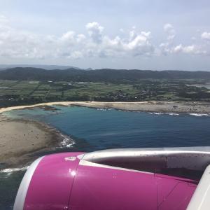 【3人子連れ】奄美大島夏休み旅行2〜ピーチでひとっ飛び