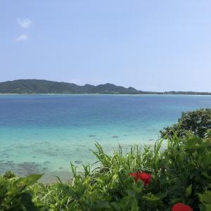 【3人子連れ】奄美大島夏休み旅行7〜シュノーケリングできるビーチ