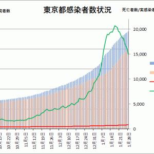 東京都の感染状況(その13):緊急事態宣言発令後の動向