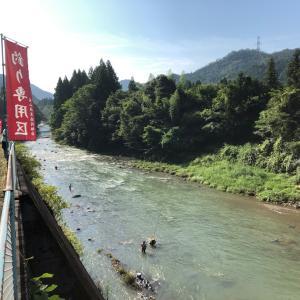 武儀川釣行