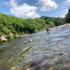 馬瀬川下流釣行