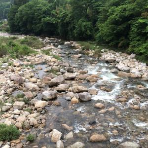 根羽川からの浦川釣行