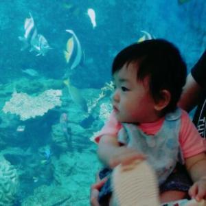 *初めての水族館*