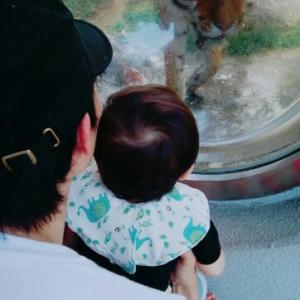*初めての動物園*