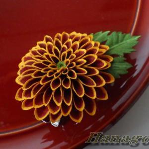 ぽんぽん菊ツートンカラーのコサージュ&髪飾りCreemaに出品