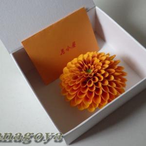 ぽんぽん菊の発送と津城跡とサオリーナ
