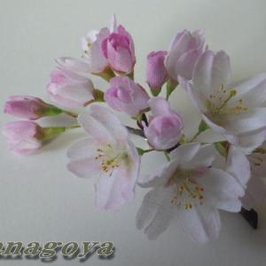リアル桜!ソメイヨシノのコサージュを再販