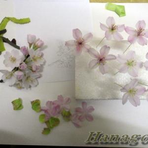 江戸彼岸桜の制作と寒中ジョギング