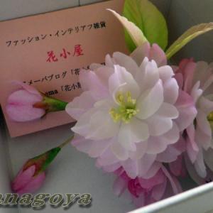 八重桜とミモザのコサージュ発送です