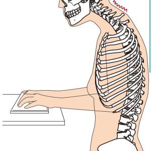 ただ寝るだけ、簡単にできる姿勢矯正法!目・首・肩・腰、そろそろ身体が凝り固まっているのでは?!