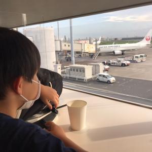 夏休み9日目 羽田空港の秘密