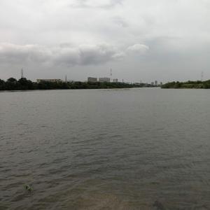 淀川のバス釣りはなぜタフか考えてみた。