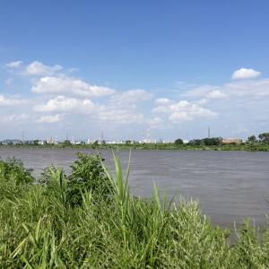 激流の淀川