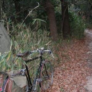 生駒山地を越えて大阪まで
